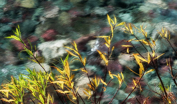 River of Perceptions