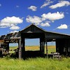 Rural SK old farmyard building.  As we walked toward this shed, we were startled by two owls taking flight. Based on the amount of small bones, feathers and pellets littering the dirt floor,they had been usiing it as a roost.
