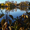 October Park-2