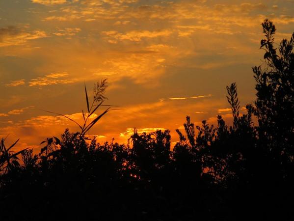 J - Cape May Sunrise