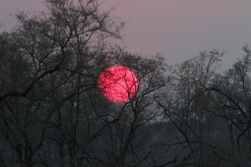 M -  An unusual crisp African sunset