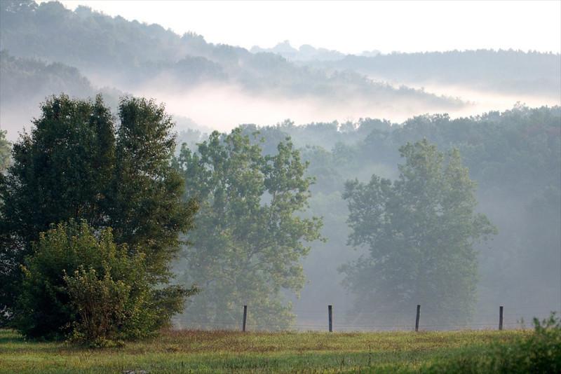 J - Morning mist