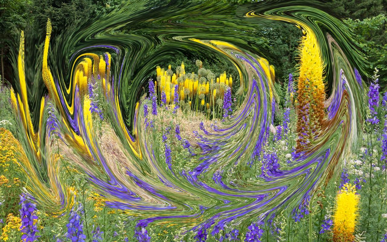 J - A Sea of Foxtail lilies