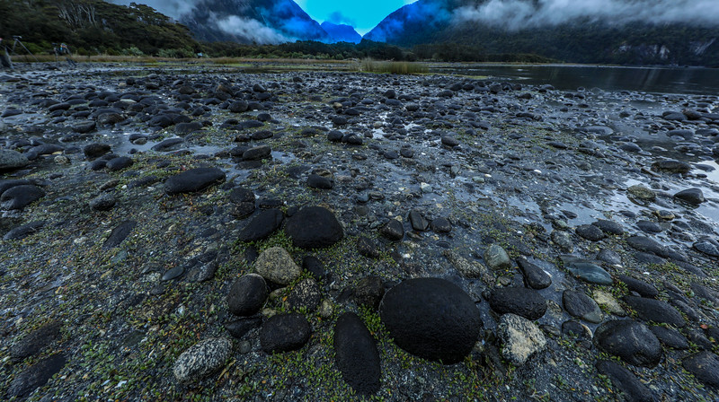 M - Rocky ground at Milford Sound NZ