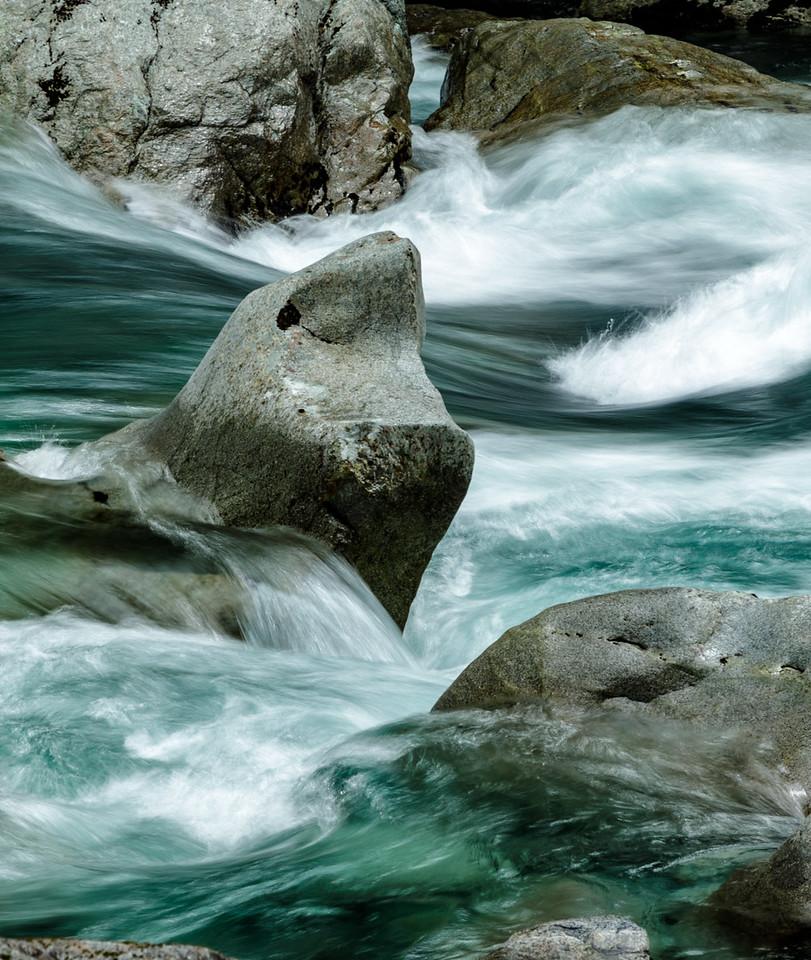 M - Prehistoric water creature NZ