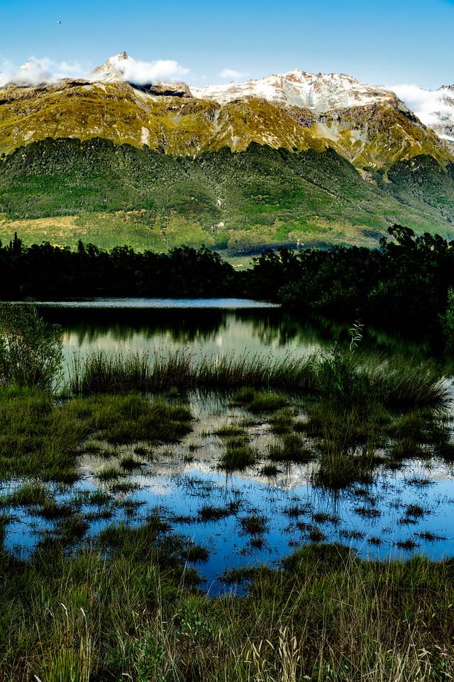 M - Vertical nature layer cake NZ
