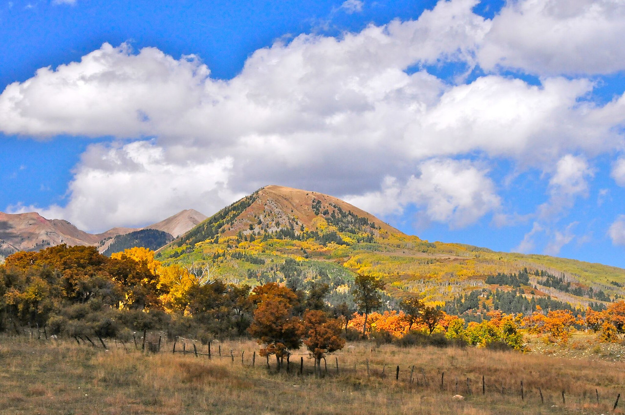 W - Fall Colors on the Way to Mesa Verde