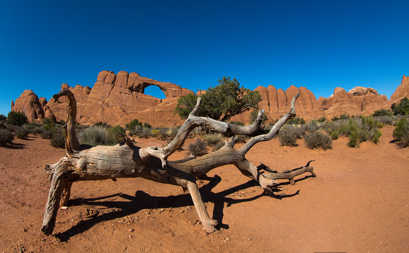M - Arches NP View 1