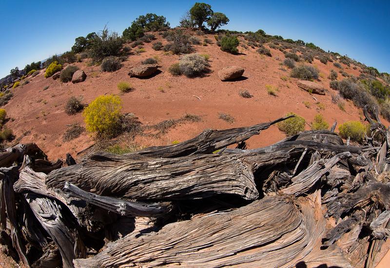 M - Canyonlands NP