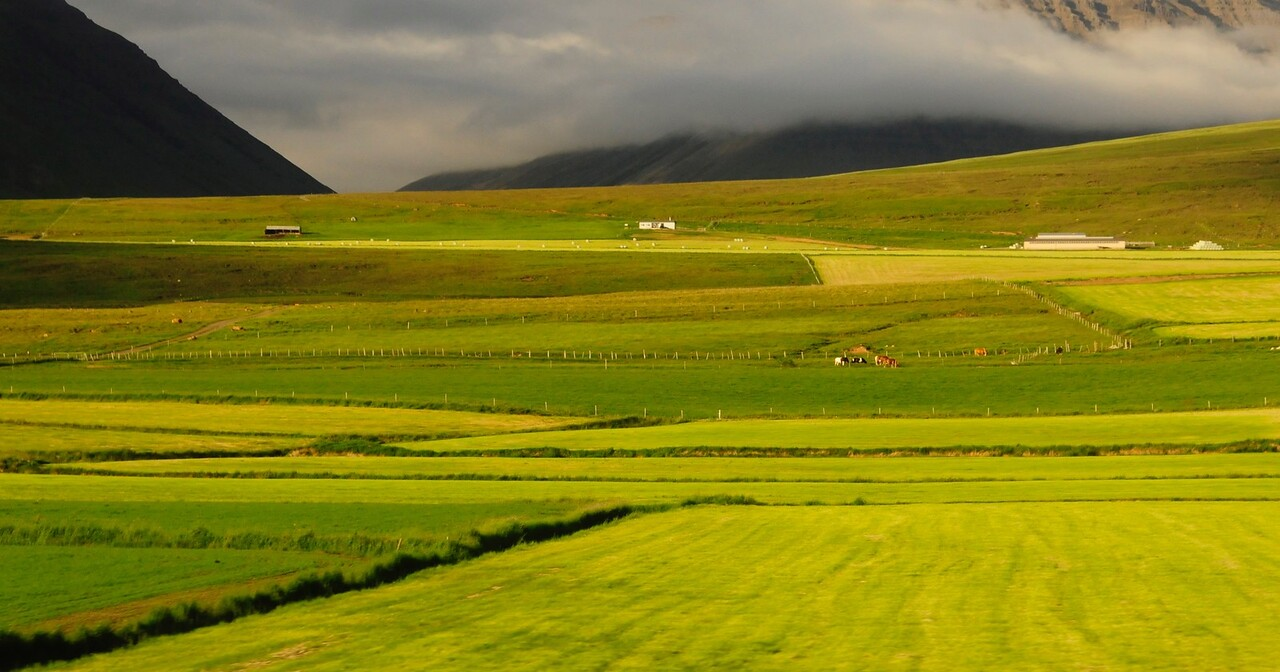 W - 07 Rolling hills in western Iceland