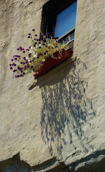 I - Flower box