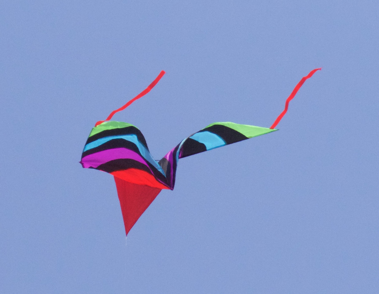 M - Kite with new lens