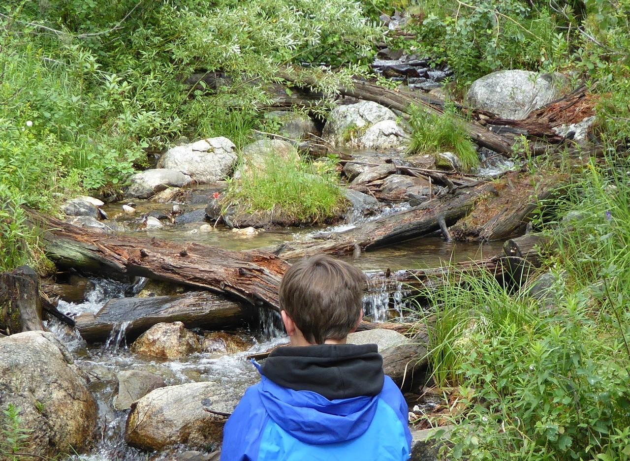 W - Mountain stream