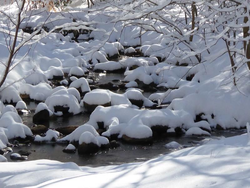 W - Snowcapped islands in Donaldson Run