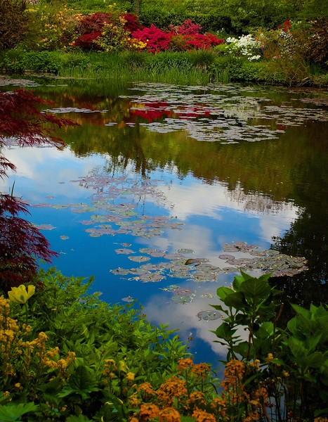 I - Monet's garden, Geverny