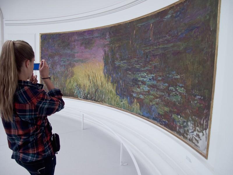 I - Musee de l'orangerie-Monet's water lilies