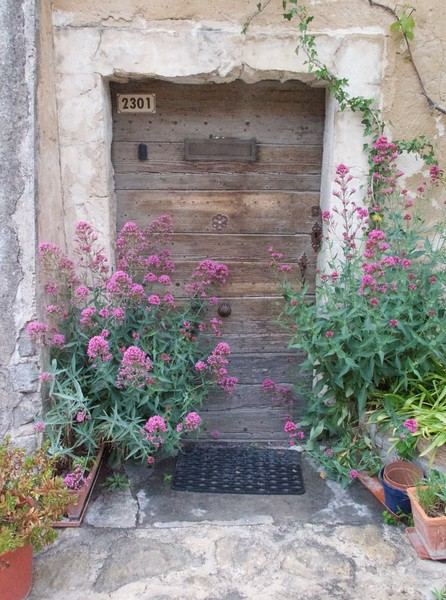 M - Door for Ira from Provence
