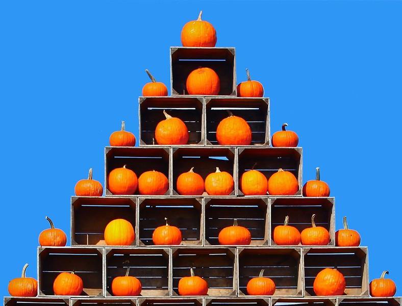 B - Pumpkins