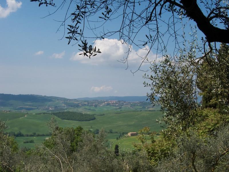 M - Pienza Hike View