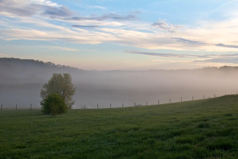 J - Easter Morning Mist
