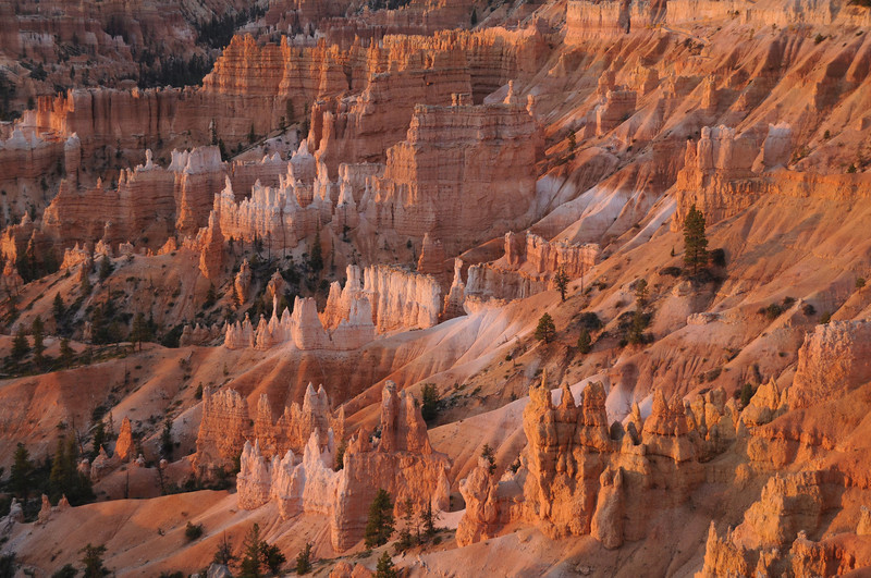 W - Sunrise Point View, Bryce NP