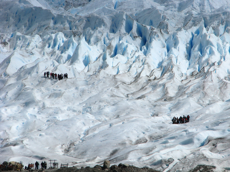 M - Ants on Glacier?