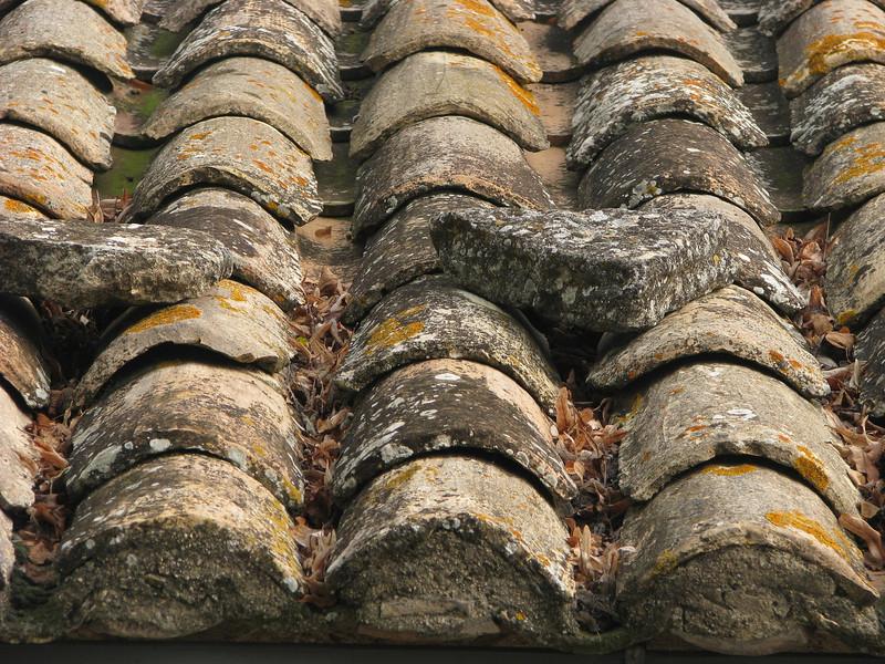 M - Roof Tile Study