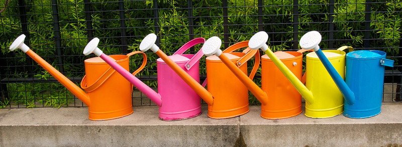 I - Bronx Botanical Gardens watering cans