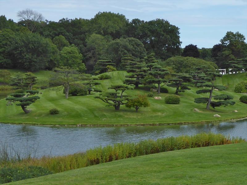 W - Japanese garden at Chicago Bot. Garden
