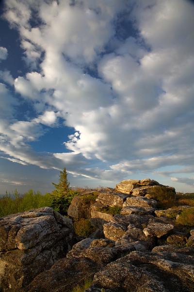 M - Rocks, Tree and Sky-WV