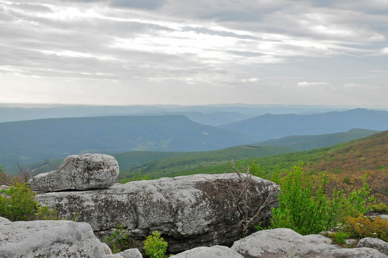 Dolly Sods, West VA