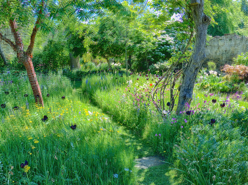 J -  My Impression of the Meadow Garden
