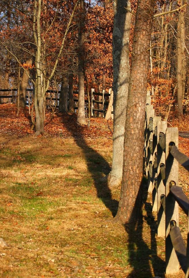 B - Fall fence line