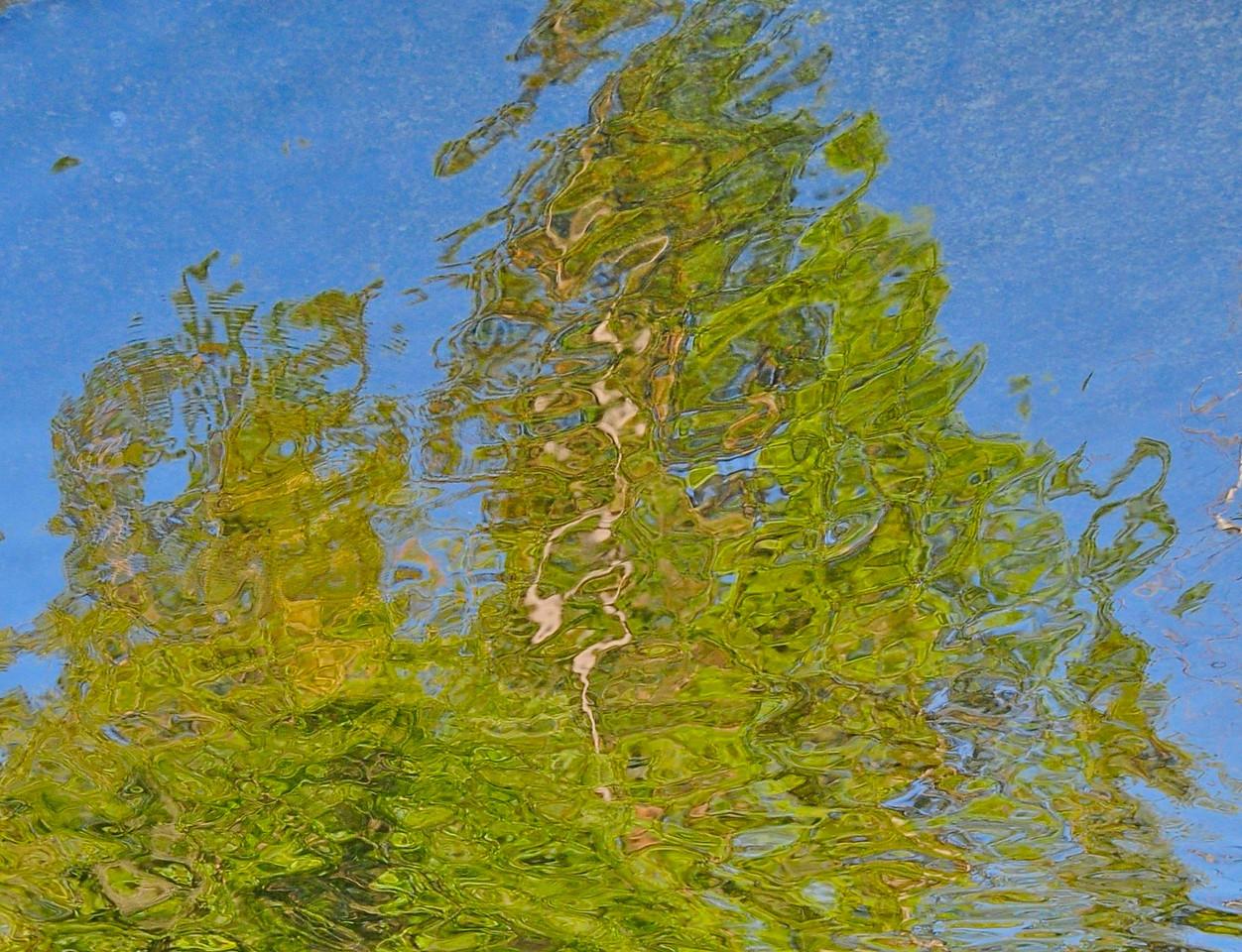 W - Water reflection - Yosemite NP
