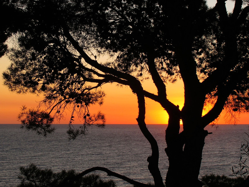 Aiguablava sunrise