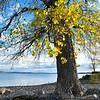 - Lake Champlain #2 -