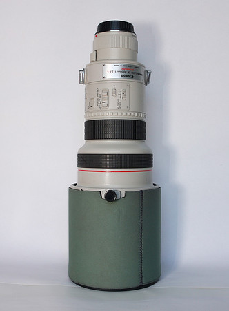 Canon 300/2.8