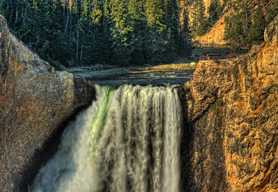 Lower Falls --- Yellowstone National Park