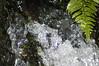 waterfall frozen by shutter 1