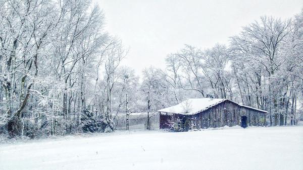 newton's barn