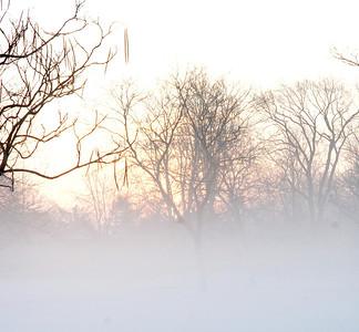 Fog n Frost 16