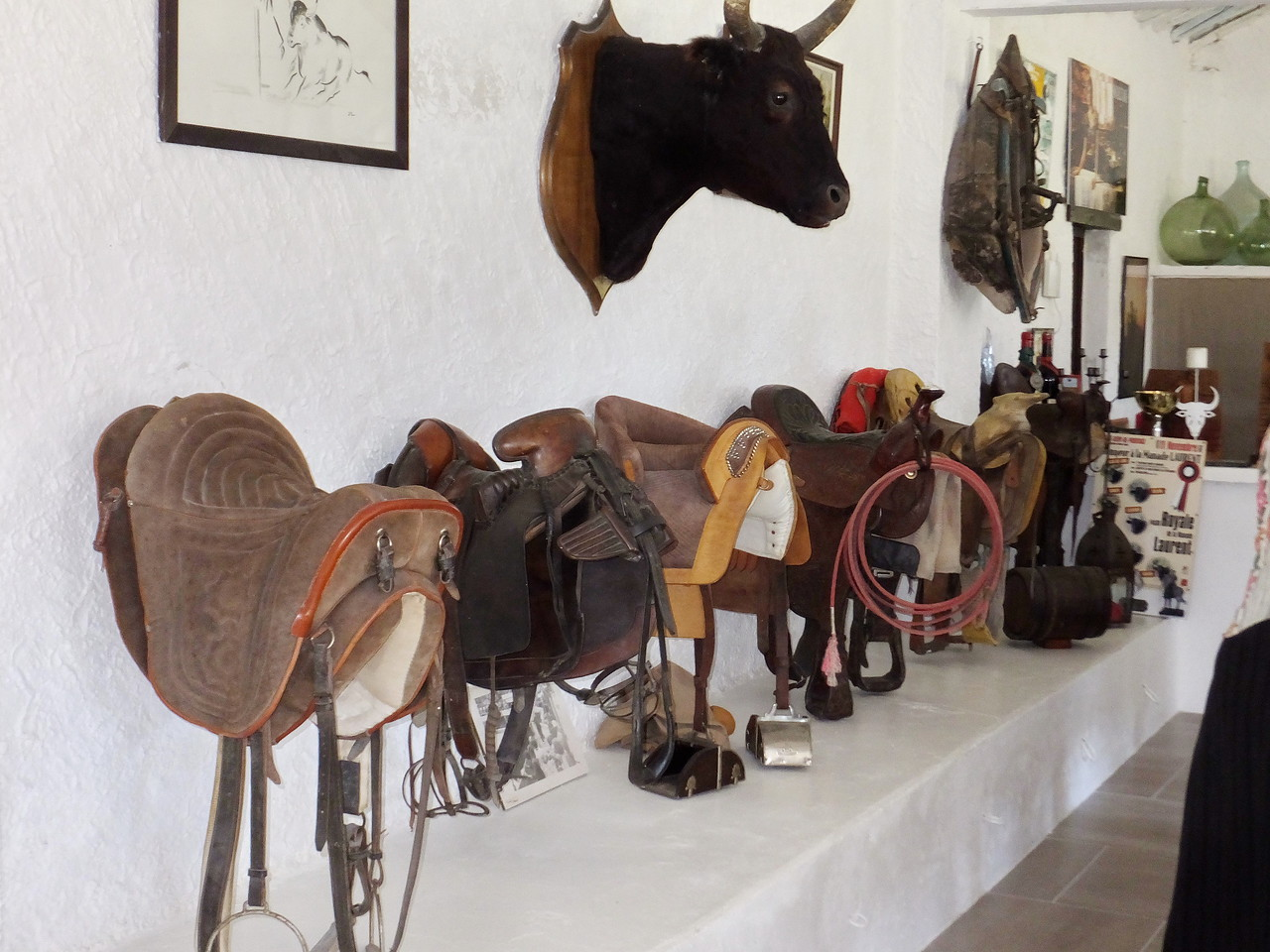 The owner has a collection of saddles, old and new, from all over the world. All are in mint condition
