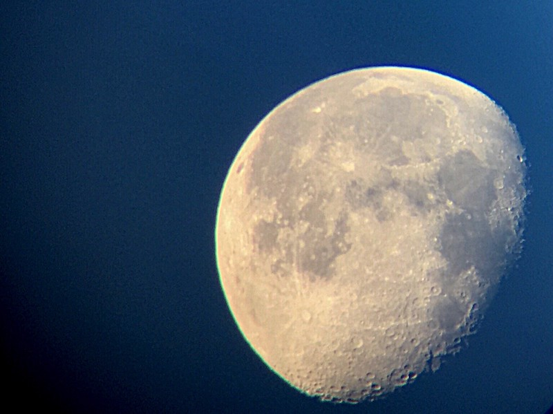 I shot this with my cell phone through a telescope.  Look at those craters!