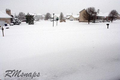 snow_20080308_2062
