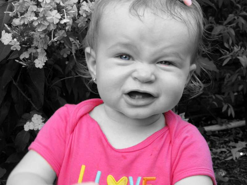 The most adorable little girl...July 2012