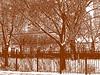 Chicago Winter Scene