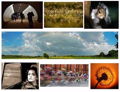Landscapes, portaits, nature, sports, urban?