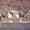 South Arabia (1963) - The cemetery at Seiyun. Domed buildings are family crypts.