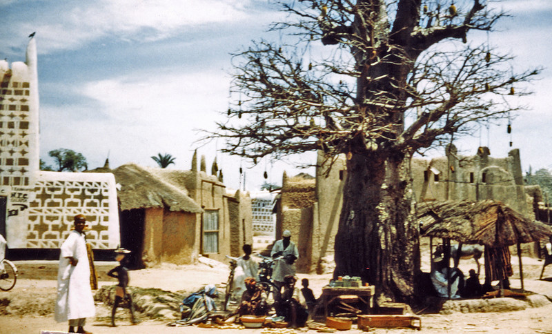Nigeria, Zaria (1959) - Baobob tree (Kwalimang) in the market marketplace of Zaria. Note vernacular architecture. I bought Godiva in this market.