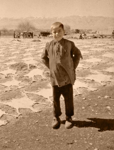 Iran, Marv Dasht Plain (1961) - Goatskins drying near Persepolis.